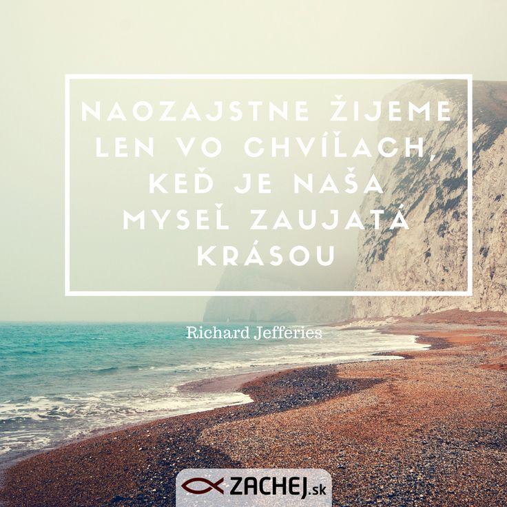 Naše srdce skutočne žije len vtedy, keď je zaujaté krásou.  Dnešný citát vyberáme z knižočky Slová na cestu životom. objednať si ju môžete na https://goo.gl/h8v4xU 🌊🌠🌌🌈 💛 #citaty #myšlienky #devotions #quotes #inspiration #zachejsk #citatyzachej #knihy #citamkrestanskeknihy #dnescitam To se mi líbí