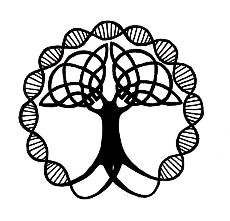 30 Best Black And White Images On Pinterest Tree Of Life Celtic