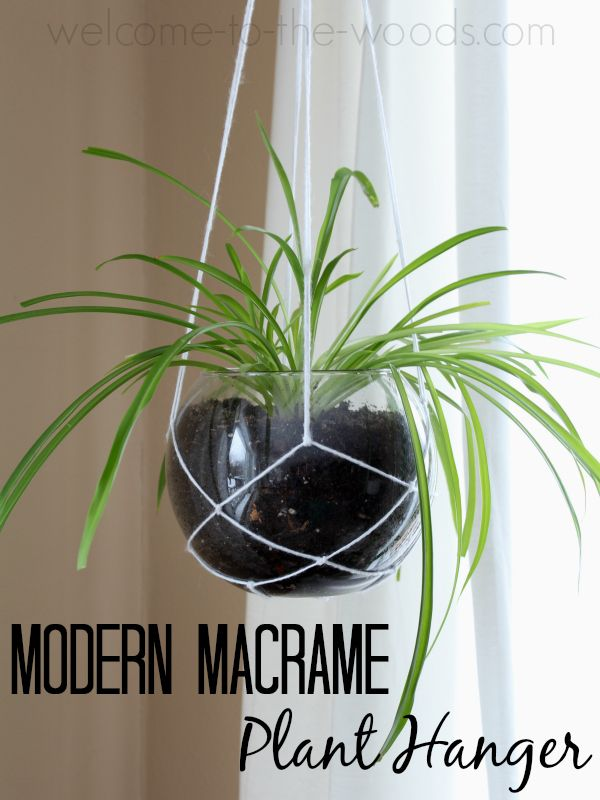 how to make string from plants