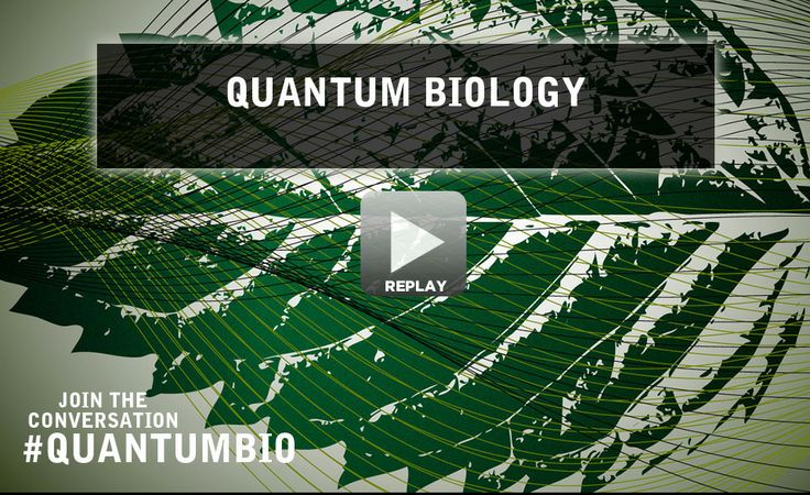 Quantum Biology | World Science Festival Webcast   Can the spooky world of quantum physics explain bird navigation, photosynthesis and even our delicate sense of smell? Clues are mounting that the rules governing the subatomic realm may play an unexpectedly pivotal role in the visible world. Leading thinkers in the emerging field of quantum biology explored the hidden hand of quantum physics on the scales of everyday life.