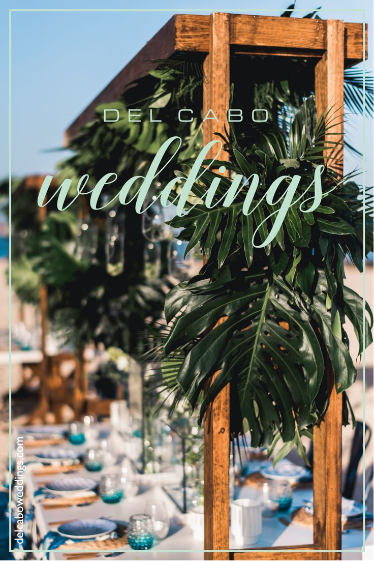 Beautiful organic wedding décor ideas for your destination beach wedding in Cabo! Check out this Organic wedding ideas board for more inspiration!
