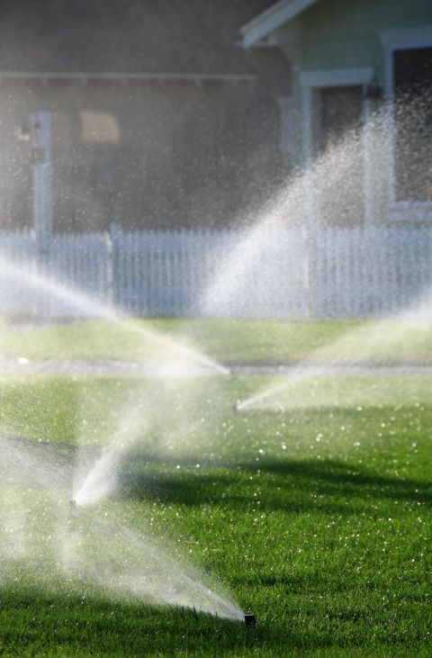If you want some seriously beautiful grass, you should water your lawn in the morning, between 4 a.m. and 10 a.m., twice a week, until the grass is soaked six inches deep,saysMatt Maurer, owner ofPureLawn Lawn Services.