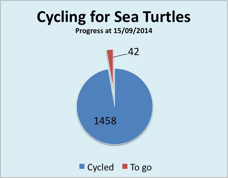 Red Sea Turtle Project - UK: MARCO GIOVANNINI - PADI CD 619790 - UK: 1458 Km - ...
