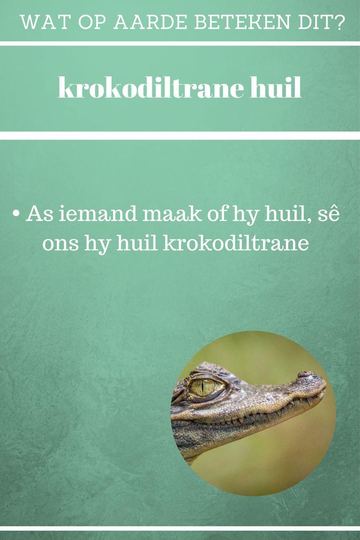 Krokodiltrane huil | Maak of jy huil | Afrikaanse idiome en uitdrukkings