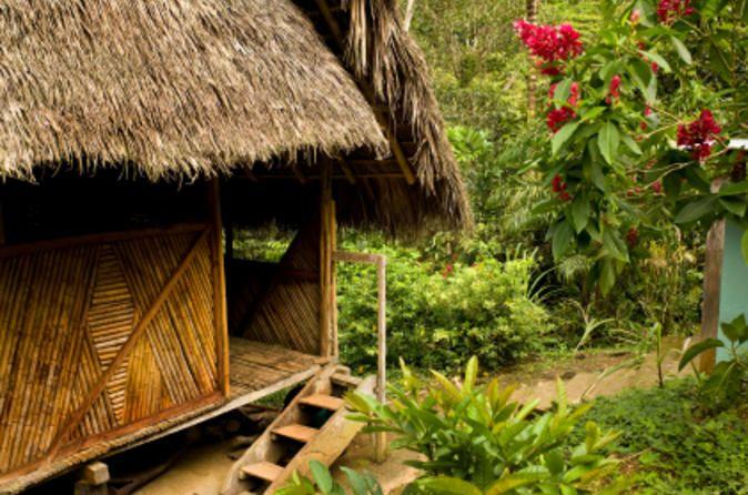 3-tägiges Dschungelabenteuer in Iquitos im Amazonas in der Ceiba Tops Luxuslodge - TripAdvisor