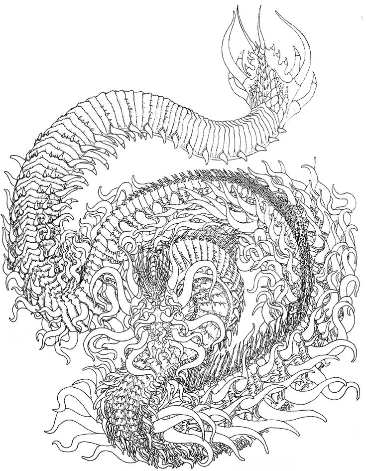 556 best Dragons to Color images on Pinterest   Coloring ...