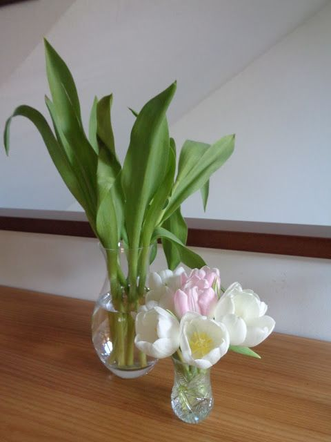New way to display tulips