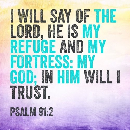 psalm 91 case The holy bible: king james version psalms 91 and under his wings shalt thou trust: his truth shall be thy shield and buckler.