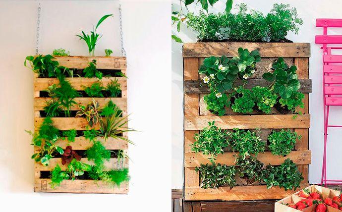 Jardin vertical bricolage avec palettes pour int rieur et - Comment faire un jardin vertical ...