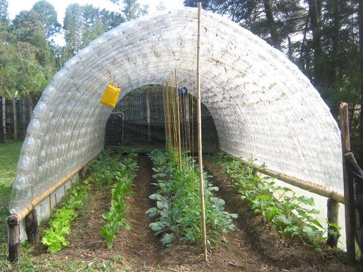 Mejores 20 im genes de invernadero con botellas de plastico en pinterest de pl stico - Fabricar un invernadero ...