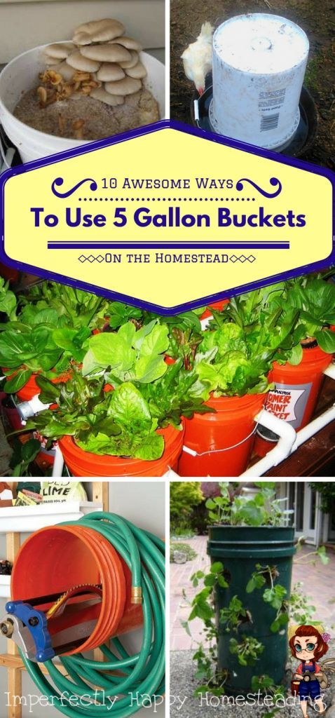 10 Awesome Ways to Use 5 Gallon Buckets on the Homestead. When it comes to homesteading or prepping 5 gallon buckets can be a great tool to have.