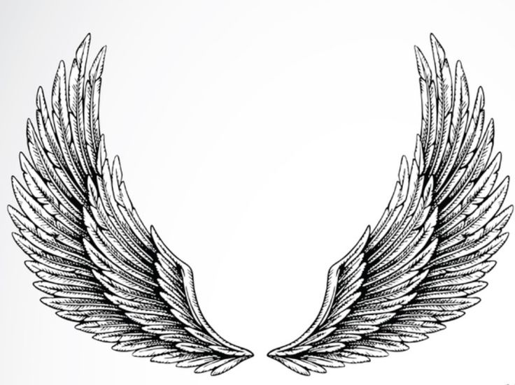 Idee Dessin Tatouage Ailes Ange Eyzz2