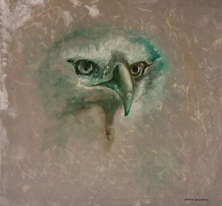Eagle By Roblfc1892: 234 Best Images About Eagle Art On Pinterest