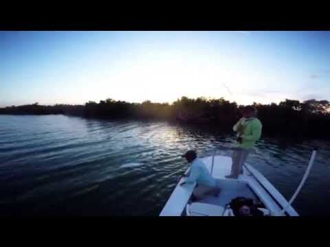 18 best images about tarpon trip on pinterest miami for Fly fishing miami