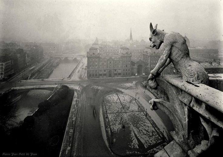 Gargouille, Notre Dame de Paris, 1920