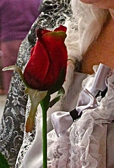 La leggenda del bòcolodi San Marco, or the legend of the rosebud of St Mark's, is a little known Venetian tradition that sees men giving their beloveds a red rosebud as a sign of their true love on April 25th. … Continue reading →
