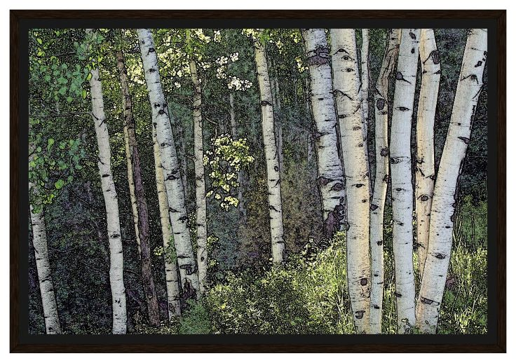 "Framed Canvas - ""Aspen Grove"" 16x24"
