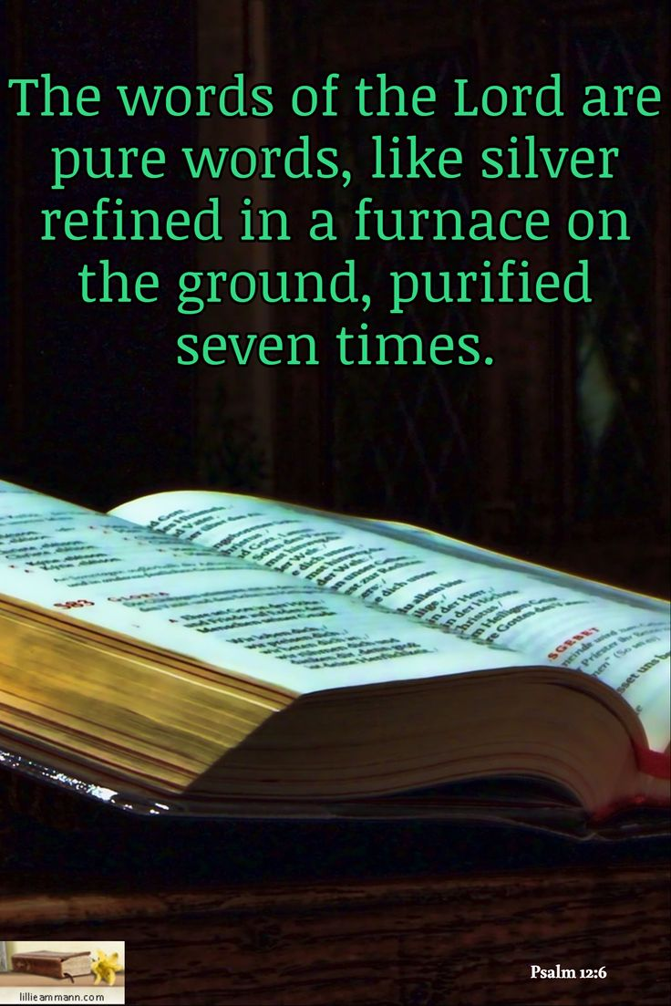 The words of the Lord are pure words, like silver refined in a furnace on the ground, purified seven times. / Psalm 12:6
