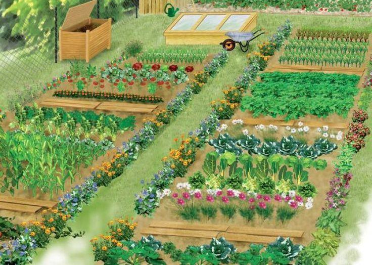 cr er le plan de son potager potager pinterest potager jardins et jardin potager. Black Bedroom Furniture Sets. Home Design Ideas