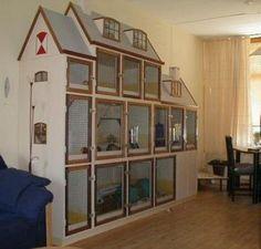 Выбираем клетку витрину для шиншиллы | Питомник <<Счастливая Шиншилла Екатеринбург>>