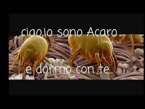 COME PULIRE IL MATERASSO - YouTube