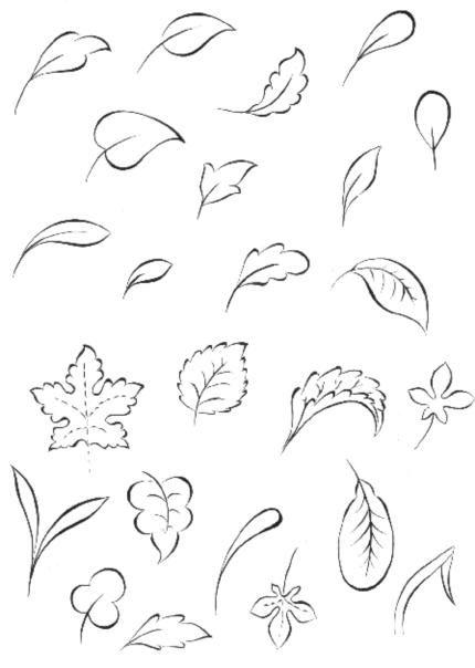 Cahide Keskiner - Minyatür Sanatında Doğa Çizim ve Boyama Teknikleri  Çeşitli yaprak çizimleri