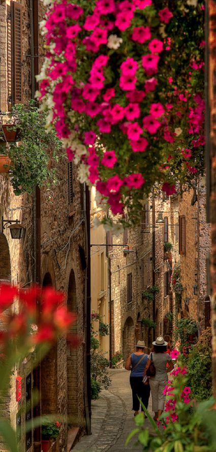Strolling on the beautiful streets of Spello in Umbria, Italy •  photo: Luca Ternelli on Flickr