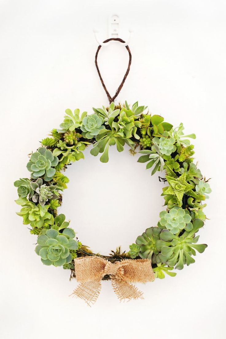 I took a trip to the craft store a couple of weeks ago with the intention of picking up a few Christmas decorations. On a whim I decided to DIY my own succulent wreath, and walked out with my arms filled with supplies. I love the idea of decorations that can easily be modified and used year round. When the season is up I plan to remove the bow and hang my wreath outside.