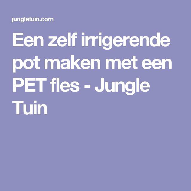 Een zelf irrigerende pot maken met een PET fles - Jungle Tuin