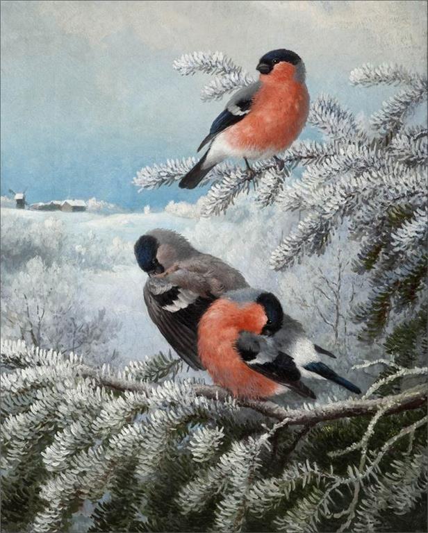 Ferdinand Henricsson von Wright (1822-1906) — Bullfinches, 1890   (616×768)