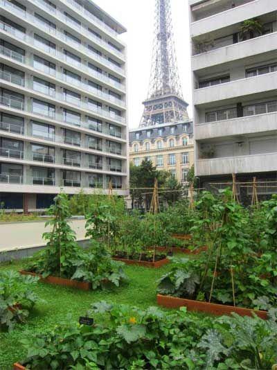 les 10 meilleures id es de la cat gorie jardins sur le toit sur pinterest habitat jardin. Black Bedroom Furniture Sets. Home Design Ideas