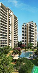 Contact to 8800698955 for Buying 3BHK Low Rise Flats by DLF Group in Gurgaon.