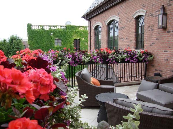 Epic au enm bel balkon gestalten terrasse pflanzen blumenkasten Garden