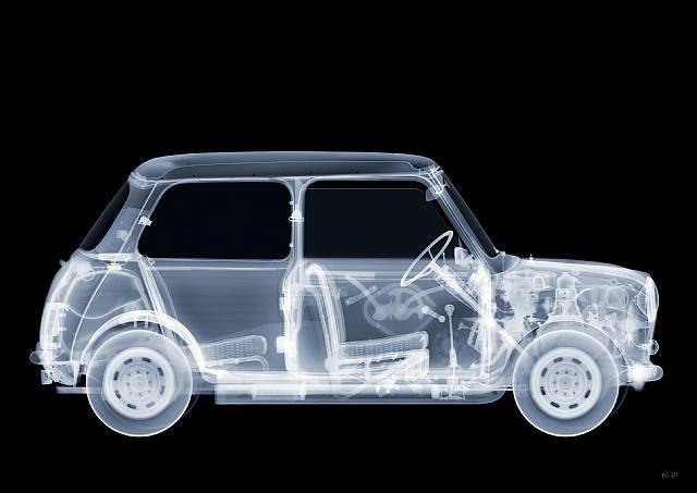 X-ray art