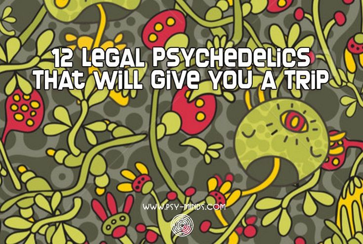 12 Legal Psychedelics That Will Give You a Trip - @psyminds17
