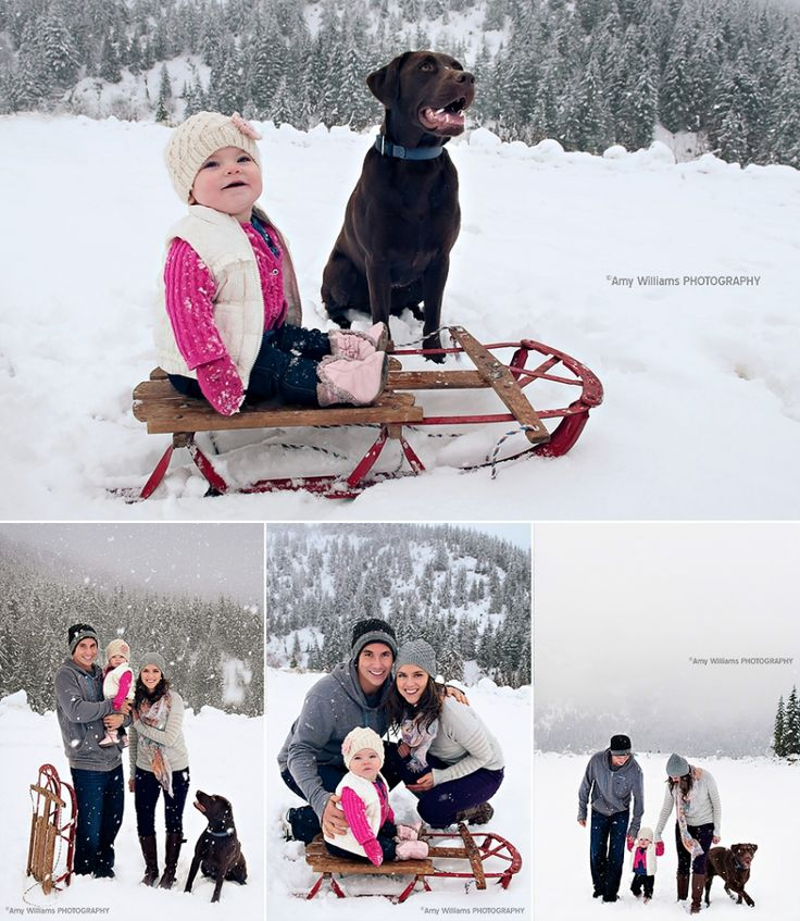 Cute for Christmas photos. Maybe with a few people standing and one sitting on sled?