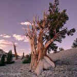 Top Landscape Photographers You Should Follow