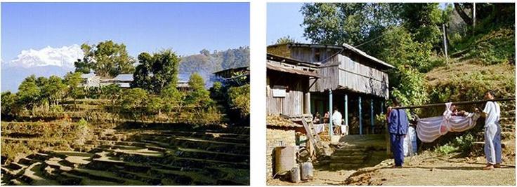 Amppipal Hospital - Nepalmed e.V.