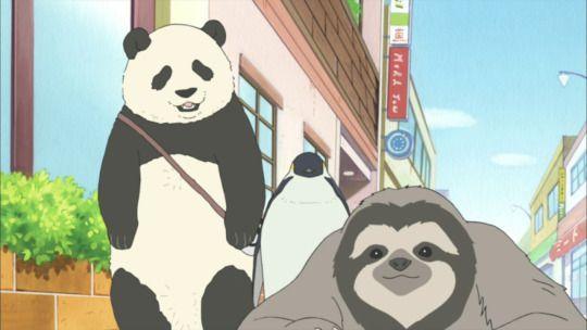 87 Best Images About Shirokuma On Pinterest Posts Anime