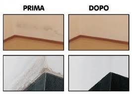 Come tutti sappiamo la muffa è composta da batteri che si nutrono di acqua e di sostanze che proliferano sui muri. Iniziamo ad accorgerci della sua presenza, inizialmente con piccoli puntini neri, poi con macchie sempre più estese. Oltre che brutte a livello estetico per l'arredamento, le macchie di muffa sono dannose anche per il …