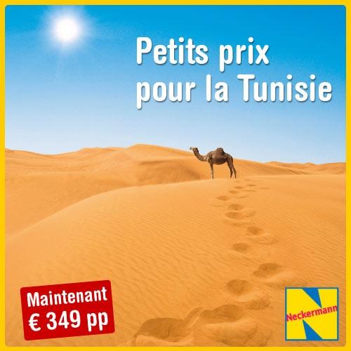 Super Promo Tunisie!  Le Tunisie à 349 euros par personne.  A découvrir sur Bon Plan voyage..