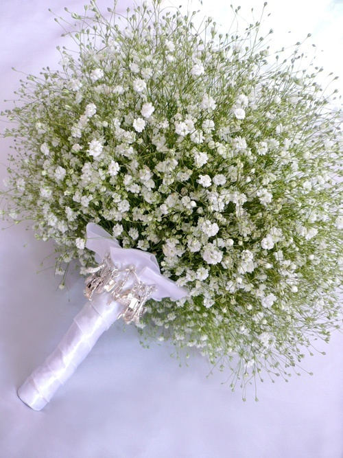 199 Best Images About Baby S Breath On Pinterest Jars Babys Breath Flowers And Wedding