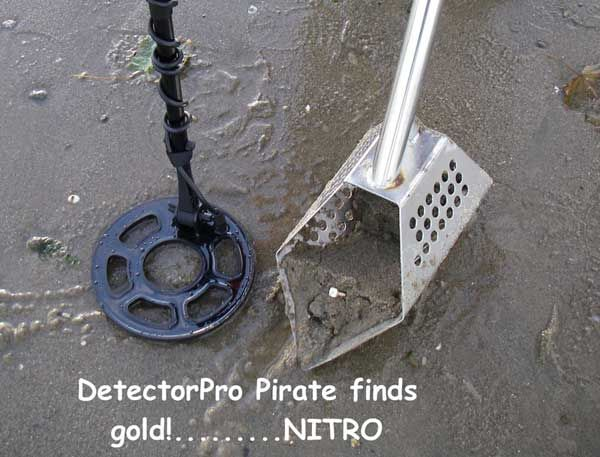 metal detector images | Metal Detectors - Finds, Stories ...