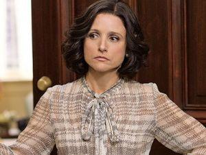 HBO new series Veep.  http://motherjones.com/mixed-media/2012/04/tv-review-veep-hbo-julia-louis-dreyfus