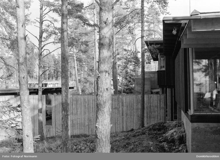 Huset vårt sett fra skogen. Bolighus, Ing. Engen, Moelv. Tegnet av arkitekt Are Vesterlid, Arkitim, Hamar.  Arkitektur.  @ DigitaltMuseum.no