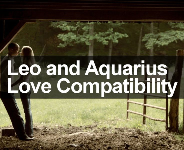 Leo and Aquarius Compatibility: http://trustedpsychicmediums.com/leo-star-sign/leo-and-aquarius-compatibility-2014/