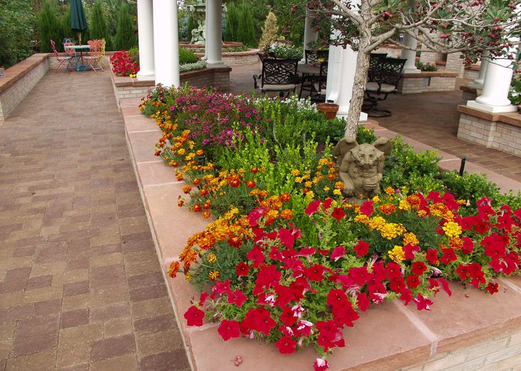 Raised flower bed in formal garden mixed assortment of for Ornamental trees for flower beds