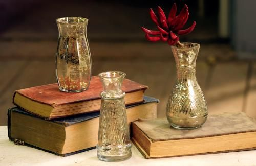 Mercury Glass Vases, available at Port: Glasses, Style, Mercury Glass, Book, Bud Vases These, Gold Mercury, Mercury Vases