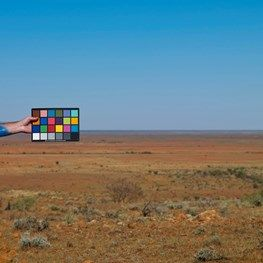 Shaun Gladwell - Profile, Exhibitions & Artwork   Ocula