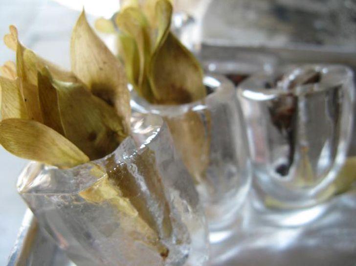 Esculturas de hielo con incrustaciones de semillas repoblan los lechos de los ríos a medida que se derriten
